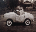Ollie In The Car Encaustic wax finish  Limited Edition 1/25 40 x 30 cm