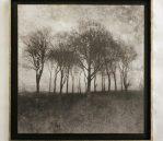 Cobden Edge Solar Encaustic wax finish  Limited Edition 1/25 27 x 27 cm